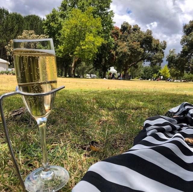 boschendal picnic franschhoek cape town vegan