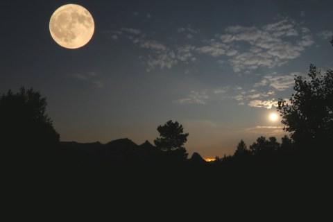 Tổng hợp hình ảnh mặt trăng đẹp nhất - Zicxa hình ảnh