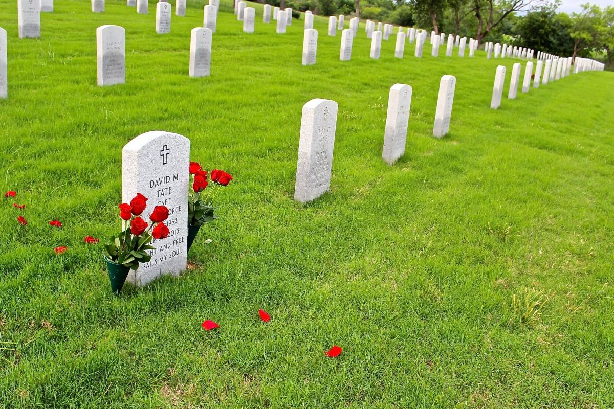 hình ảnh : Bãi cỏ, đồng cỏ, quân đội, lính, Đồng cỏ, Nghĩa trang, Bia mộ,  phần mộ, Đài kỷ niệm, Chiến tranh, Hàng, Viên đá, rơi, Cựu chiến binh, Im  lặng,