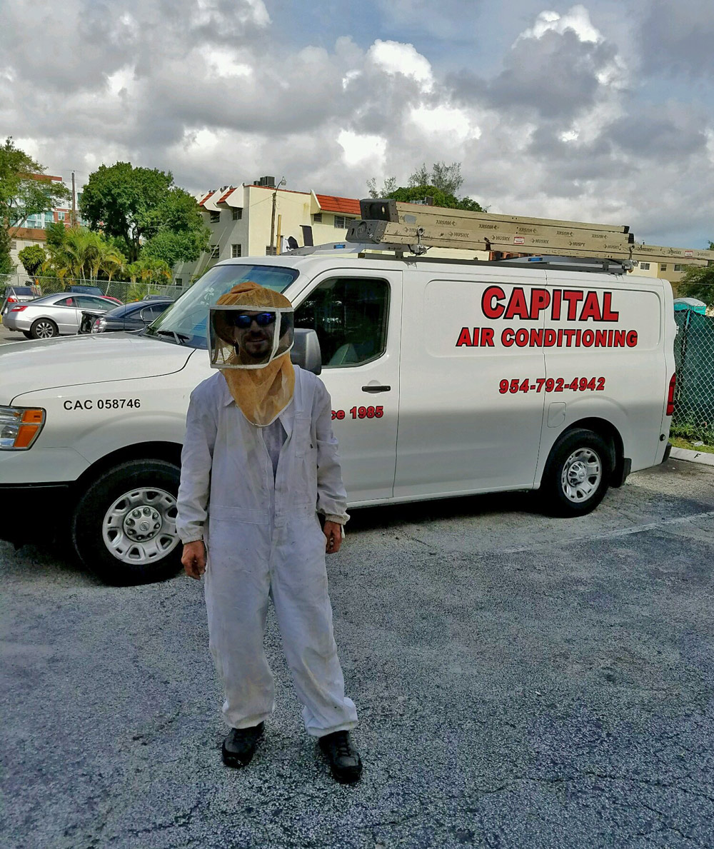 Capital Air handles bee removals.