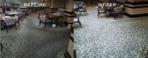 professional carpet services rugs