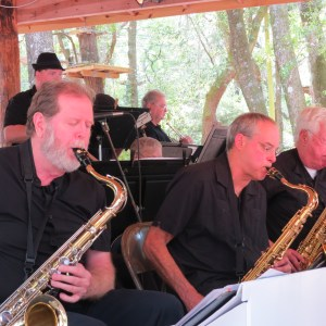 Tallahassee Museum Jazz Fest April 5, 2014