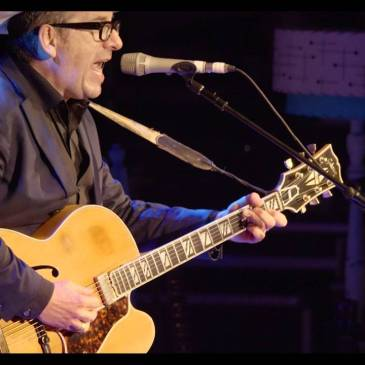 Elvis Costello in Concert