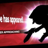 ¿Nuevo Personaje en Smash?