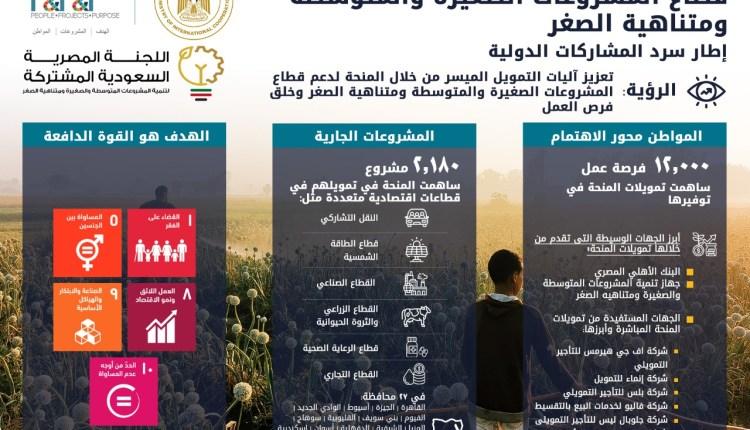 لمنحة السعودية لبنك الإسكندرية لتمويل برنامجي الحرف اليدوية والتحول الرقمي للمشروعات الصغيرة