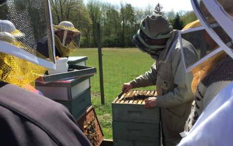 beekeeper_04
