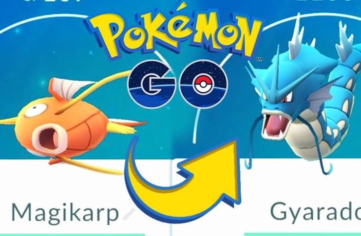 Magikarp es la mejor opción como compañero para Pokemon GO