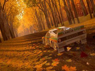 Autumn Race 2004