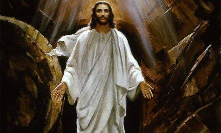 Sretan i blagoslovljen Uskrs želi Vam Čapljinska mreža!