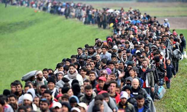 Migranti nemaju što raditi u BiH