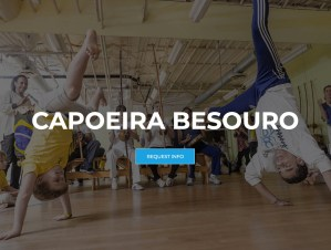 capoeiraconnection-capoeira-besouro