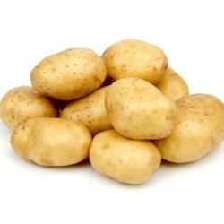 Patate Jelly (pasta gialla)1,5€/kg