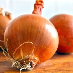 Cipolla dorata2,5€/kg