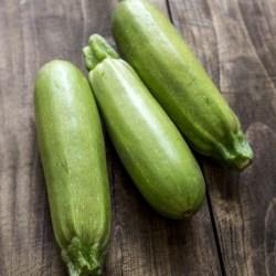 Zucchine lunghe2,5€/kg