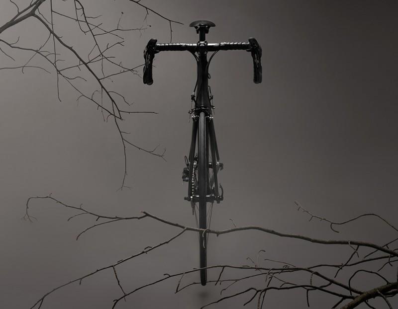 TSUBASA-CROW-FRONTAL-800x622