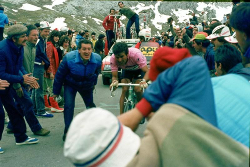 1981-Contini-in-rosa