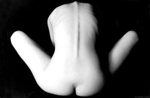 La desnudez