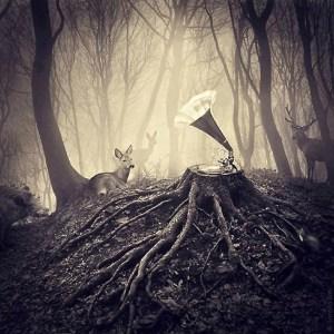 Melodia en el bosque 00
