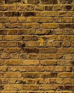 pared de ladrillos