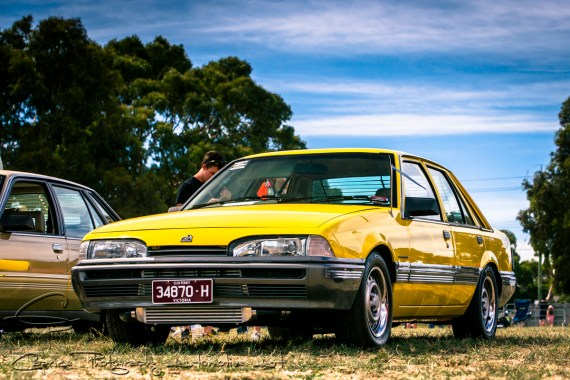 vl commodores, holden commodores, yellow cars