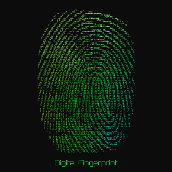 The Use of Biometrics for Authentication