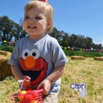 Easter Bunny Encounter & Egg Hunt on the Farm