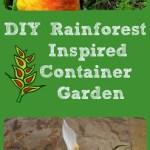 Easy DIY Rainforest Inspired Container Garden