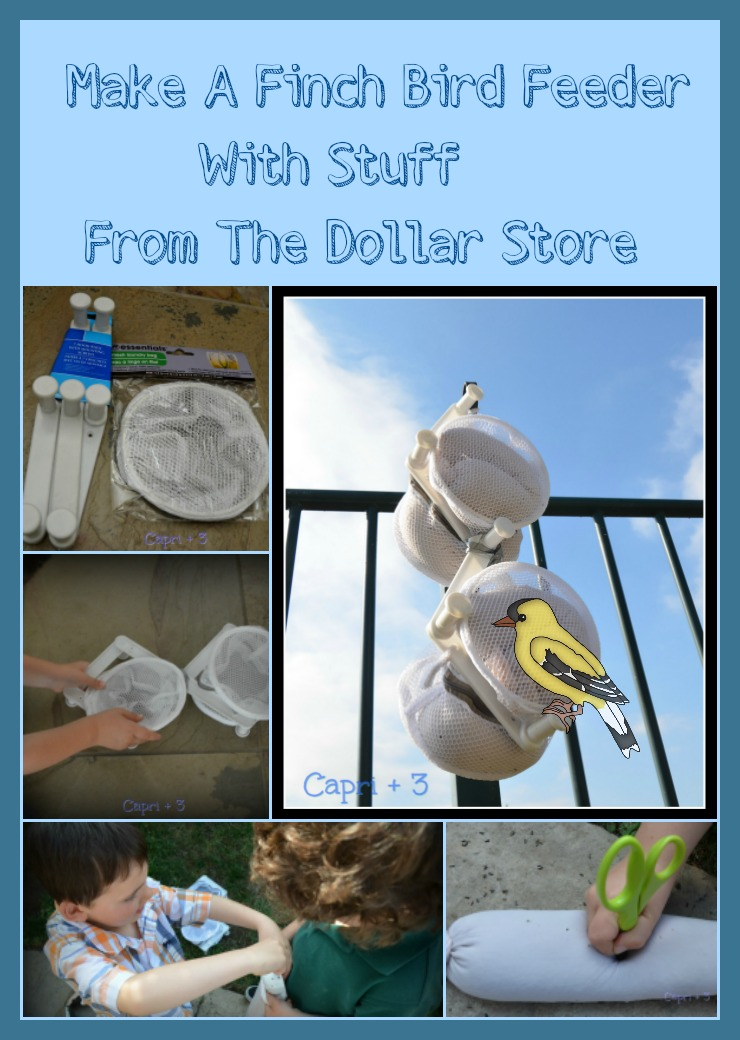 Make a Finch Bird Feeder Using Stuff From The Dollar Store