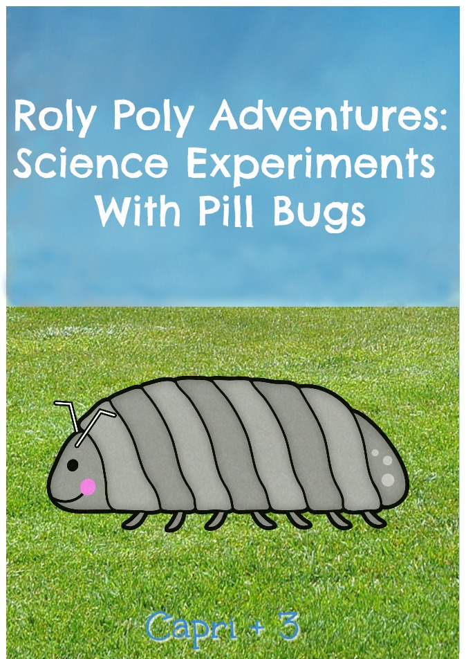 Roly Poly Adventures-Simple Science Experiments with Pill Bugs