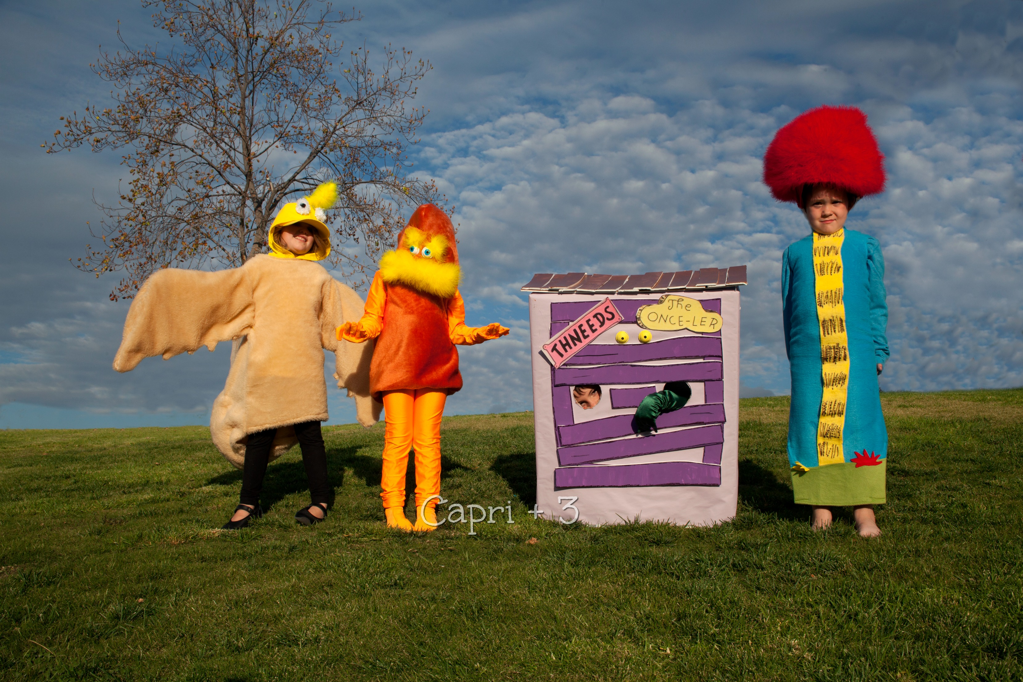 the-lorax-themed-costumes