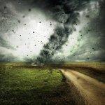Der Klimawandel – Neue Probleme, neue Märkte