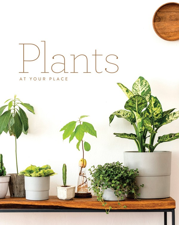 Plants At You Place Lifestyle Book
