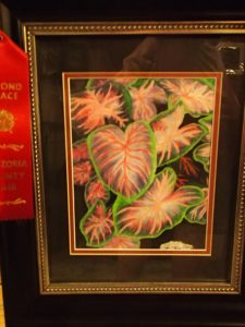 Leaves- won 2nd prize