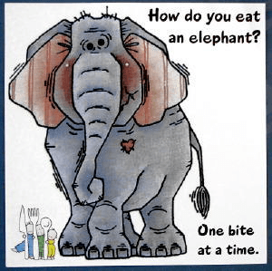 How to eat the elephant: Repeal and Replace is silly.