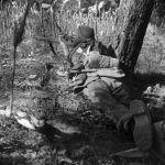 Sniper in corn field from rear MIKAN3607688