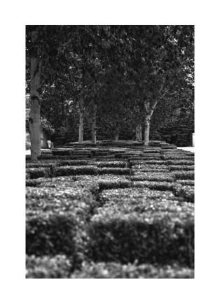 Jardin du Parc André Citroën - Paris