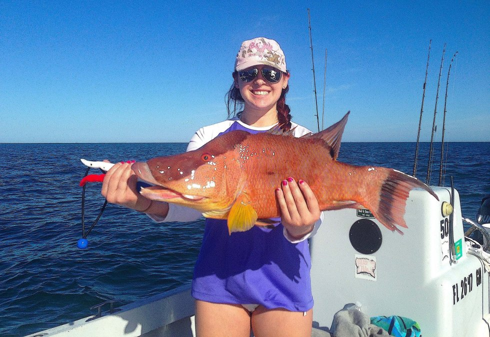 Hogfish, Thanksgiving Fishing, Sanibel Fishing & Captiva Fishing, Sanibel Island, Friday, November 25, 2016.