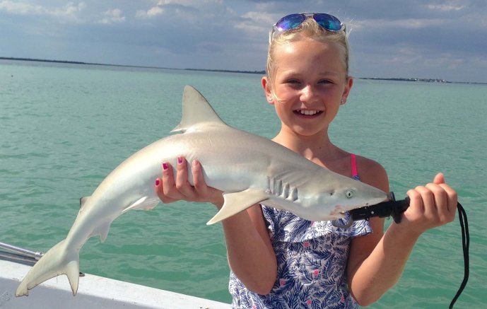 Blacknose Shark, Catch & Release, Sanibel Fishing & Captiva Fishing, Sanibel Island, Friday, October 13, 2017, [File Photo: Tuesday, April 11, 2017].