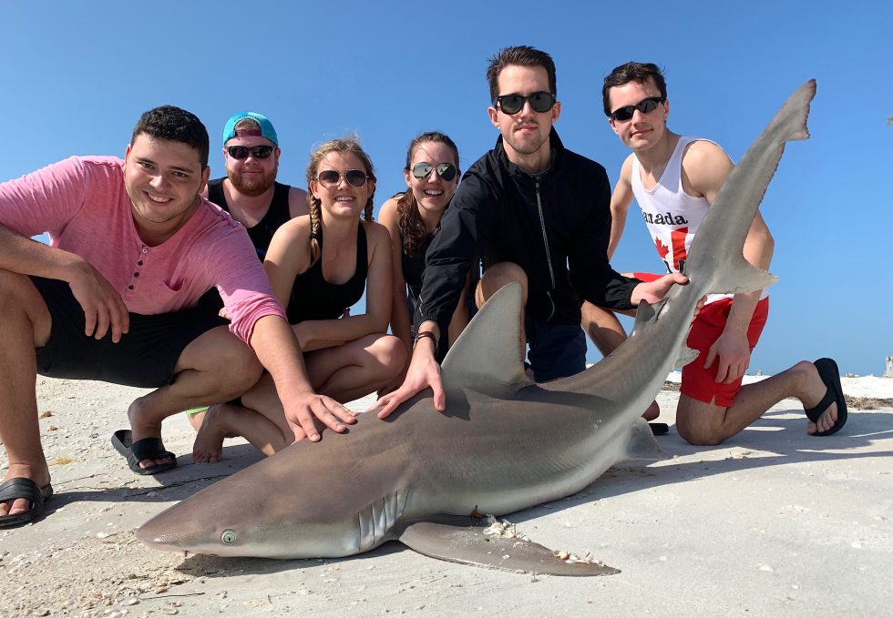 Sandbar Shark, Captain Jimmy Burnsed, Sanibel Island Fishing, Catch & Release, Captiva Island, Monday, February 18, 2019.