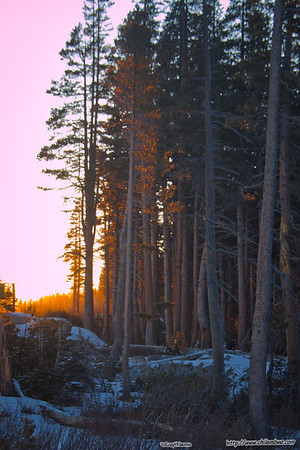 Sunset at Donner pass