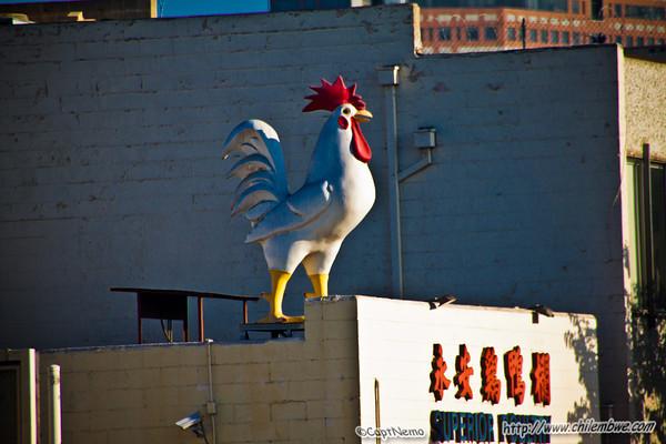Superior Chicken
