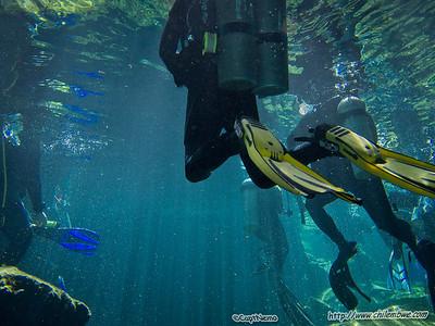 Chac Mool Cenote