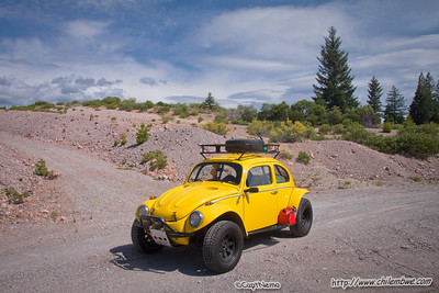 Yellow Baja Bug