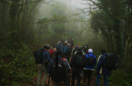 Adentrándonos en el bosque - Foto de Carlos Romero y Carlos Romero Jr de Martín Iglesias