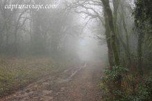 Taller de Fotografía de Paisaje - Parque Natural de los Alcornocales - 10 - M