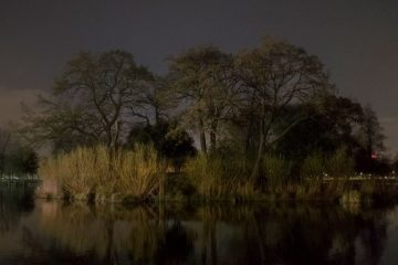 Capture London Clapham-Common-Night-©-Peter-Clarkson