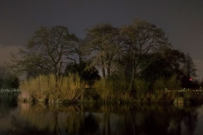 Capture London Clapham-Common-Night-©-Peter-Clarkson