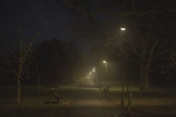 Capture London - Tooting-Common-Mist-02-©-Peter-Clarkson