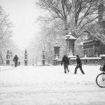 Pim Hendriksen - Amsterdam Vondelpark in Snow