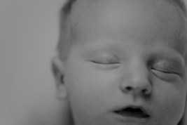 Tucker Newborn 2 Final-34